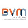 BVM Consultores